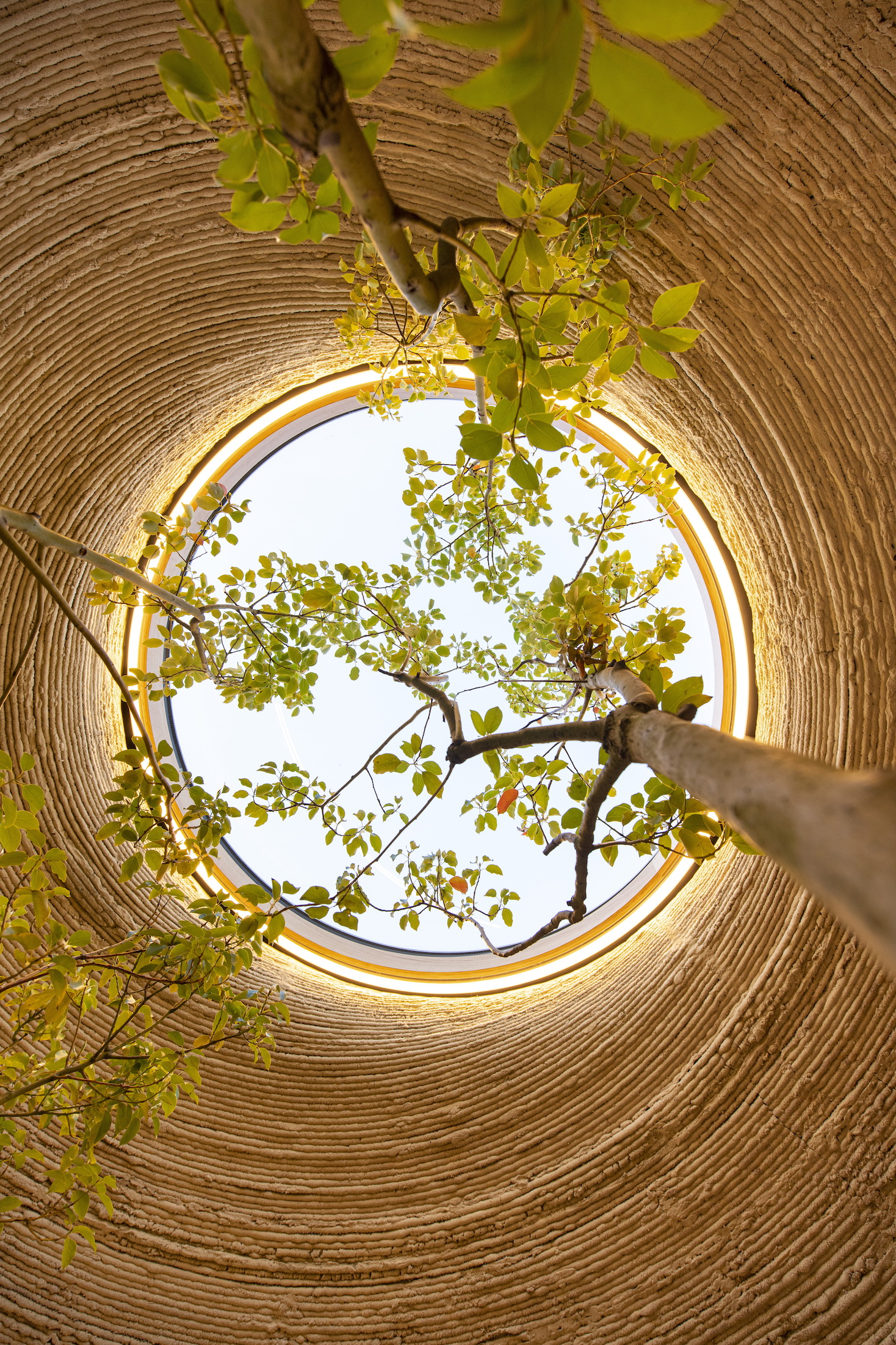 Mario Cucinella Architects, TECLA, Ravenna, 2021, Living Area Skylight Detail, Photo by Iago Corazza